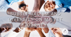 Subtle Racism and Diversity on my Vet Journey