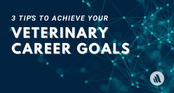 3 Tips to Achieve Your Veterinary Career Goals